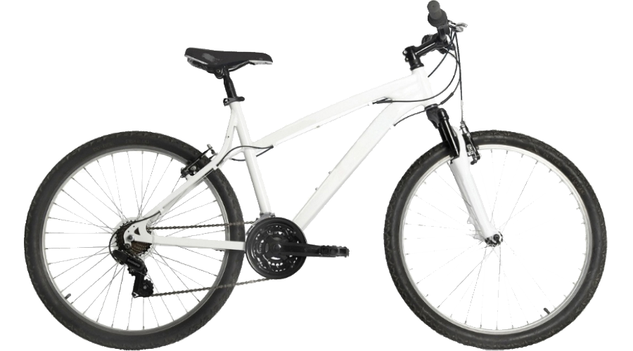 Adult Female Bike