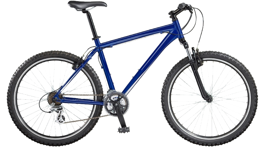 Adult Male Bike